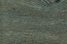 Дуб Женева [379-4]