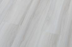 Клён Амиск [М9029-7]